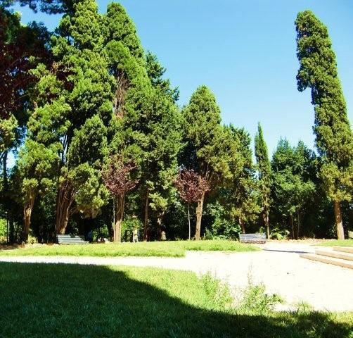 Diözesanes Picknick im Park