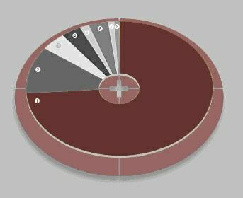 Finanzhaushalt 2011 - geplante Einnahmen