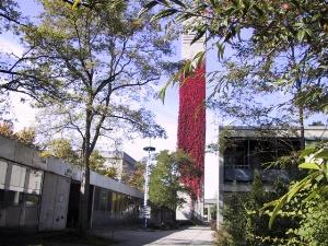 Kiga mit Turm
