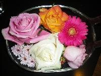 Blumen gemischt
