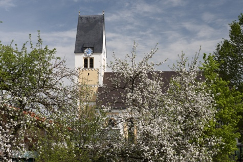 Kirche von Süden fotografiert