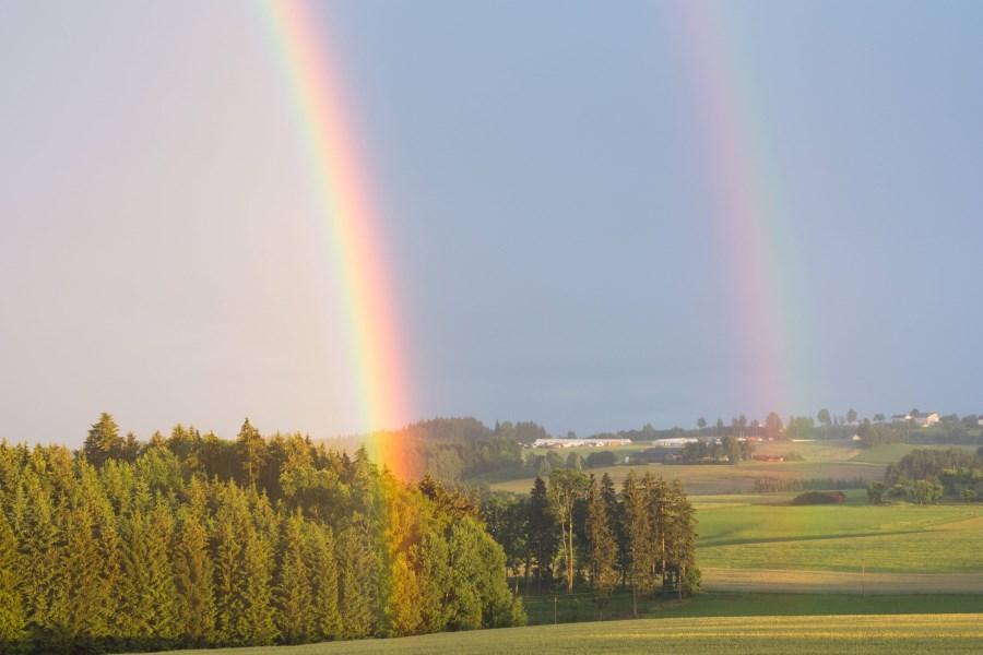 Regenbogen vor Wiesen mit Sekundärbogen