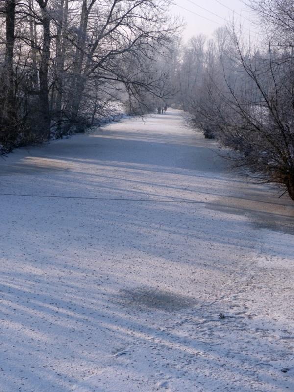 PVT_Winterimpressionen_2017 (9)