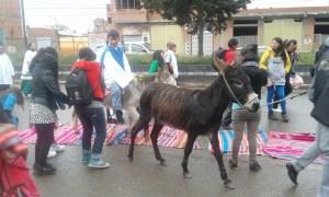 Palmsonntag mit Esel
