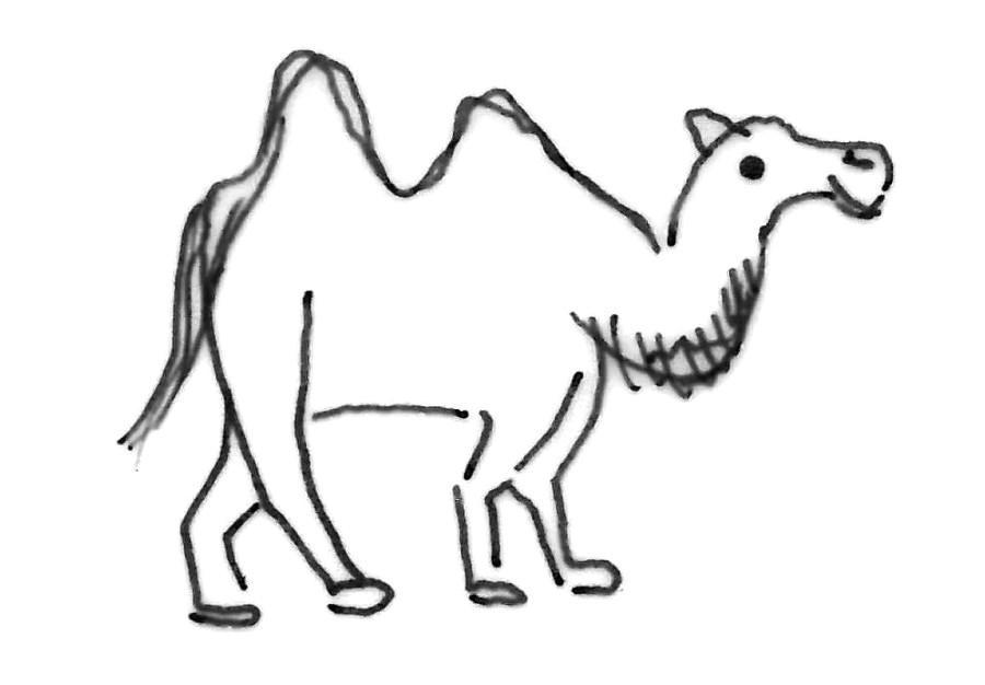 Kamel Kinderzeichnung