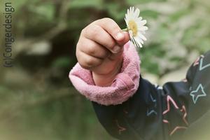 Bild_Kinderhand_Blume