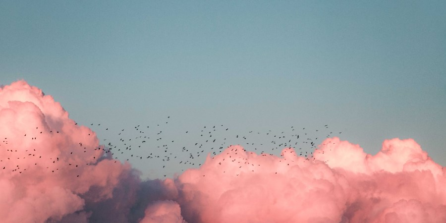 rosa Wolken am Himmel