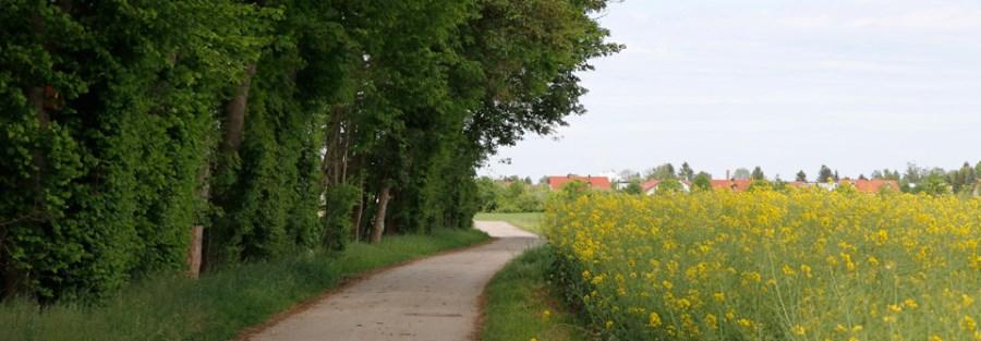 Pfarrgemeinderat Aschheim