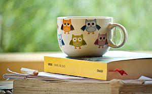 Tasse mit Eulen steht auf einem geschlossenen Buch