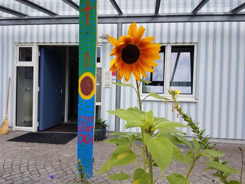 Sonnenblume vor Pfarrbüro