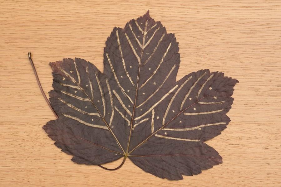 verziertes Herbstblatt