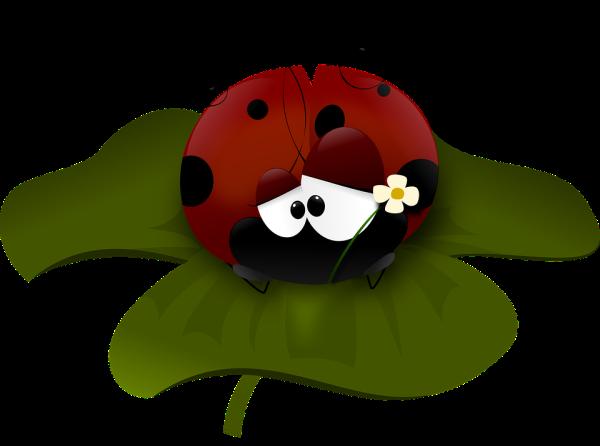 ladybug-48082_960_720