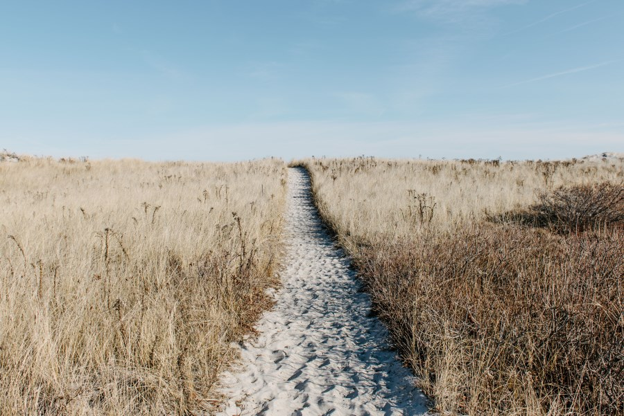 Weg zu einem Strand