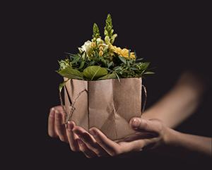 Geschenk Blume