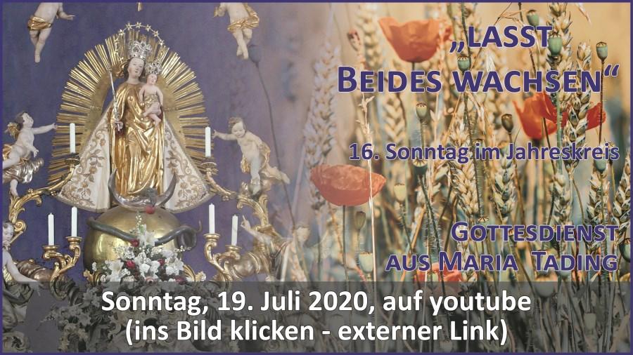 Gottesdienst Übertragung Pfarrkirche Wallfahrtskirche Maria Tading kirch dahoam 16. Sonntag im Jahreskreis A 19. Juli 2020