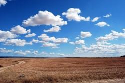 Wolken am Himmel über einem Feld