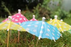 Eisschirme auf dem Rasen