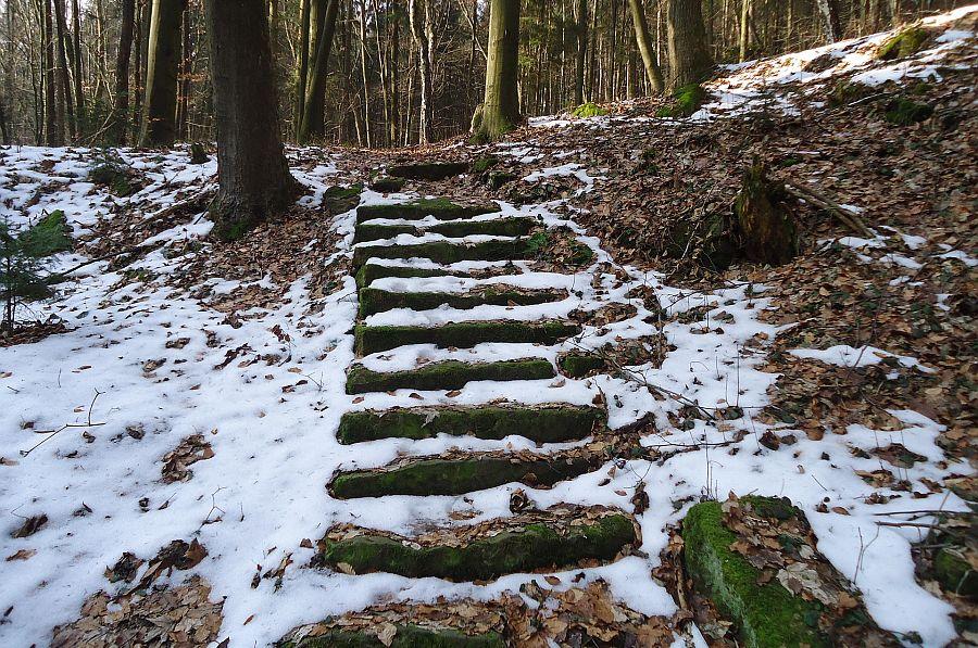 Verschneite Holztreppe im Wald