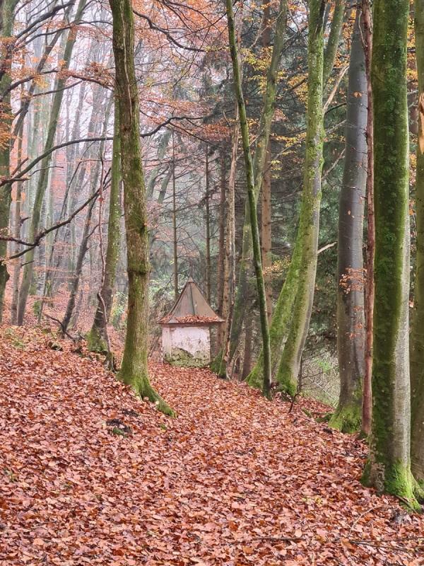 Biberschwell_Waldweg mit Wegkapelle
