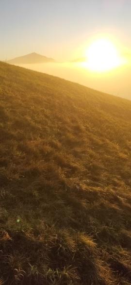 Sonnengesang