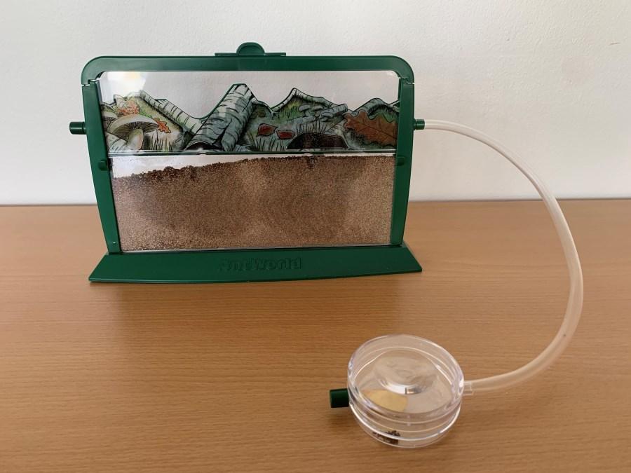 Ameisenwelt
