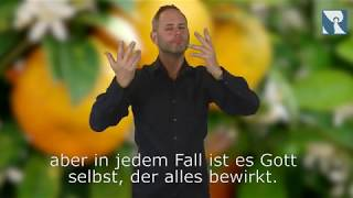 Platzhalter-Bild fuer YouTube-Video
